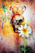 Graffiti wall with king skull and holy flower