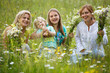 canvas print picture - Family in meadow