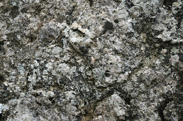 Close-up of weathered stone