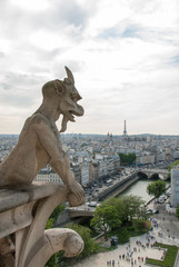 Stone Gargoyle on Notre Dame Cathedral