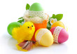 Easter Eggs and Chicken on white background