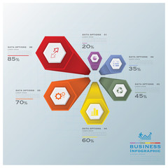 Modern Hexagon Business Infographic