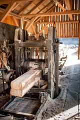 Industrial wood factory - cutting logs into lumber
