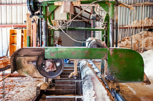 industrial wood production factory - band-saw sawmill