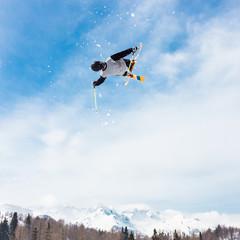Free style skier.