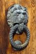 Venetian lion head door knob on the wooden door