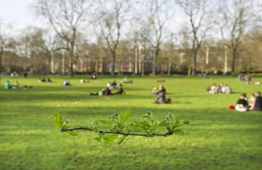 Hyde park in London.