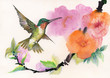 Drawing of beautiful bright birds and flowers
