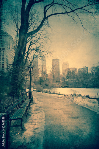 canvas print picture Vintage toned view of Central Park, NYC on winter day