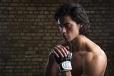 Fototapeta Malaysian boxer