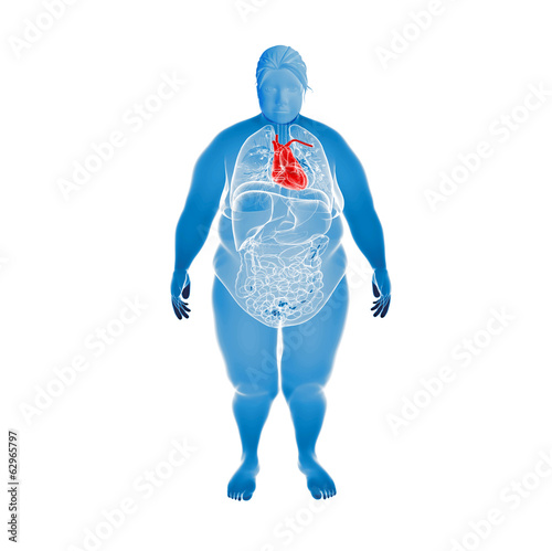 Overweight Female with highlighted Heart