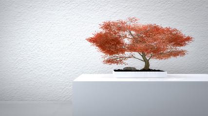 Roter Bonsai vor weißer Wand