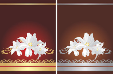 Two greeting cards with white flowers