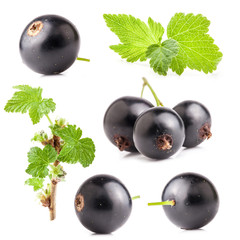 Collections of Black currant isolated on white background