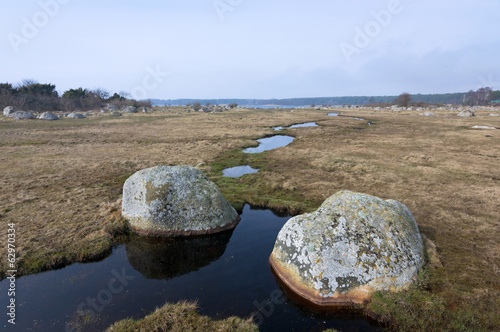 Spring water brook on Swedish sea coast