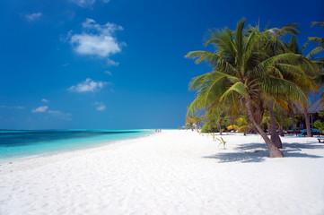 Maldives paradise