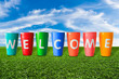 colorful welcome jars on green grass
