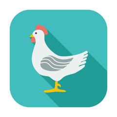 Chicken single icon.