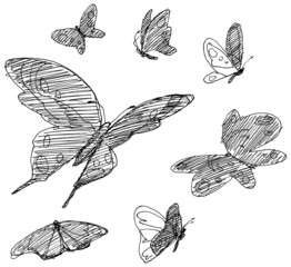 Set of hand drawn butterflies.