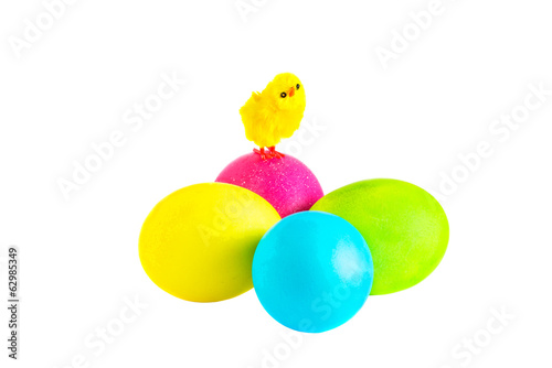 Petite chick on Easter eggs on the white background