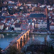 Vue de la vieille ville de Heidelberg Philosophe