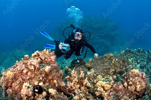obraz lub plakat Scuba Diver fotografowania w Hawaiian Reef