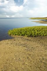 famous natural Ria Formosa marshlands