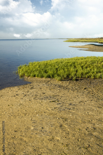 famous natural Ria Formosa marshlands