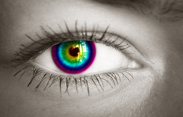 Colorful eye close-up. Toned image.