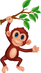 Cute monkey cartoon hanging