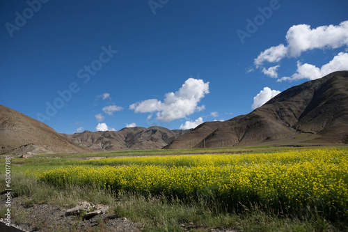 Beautiful landscape in Tibet of China