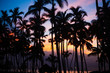 canvas print picture - tropical sunset