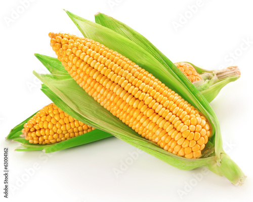 Raw corn vegetable