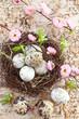 Kleines Osternest mit Wachteleiern