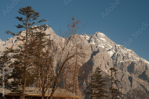 Jade Dragon snow mountain with forest  in blue sky .