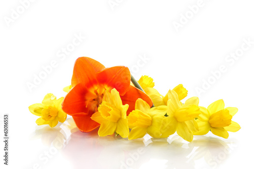 bouquet of yellow daffodils with small tulips