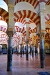 Cathedral-Mosque of Cordoba, Andalusia, Spain, Europe