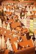Poland - Gdansk - cross processed color tone