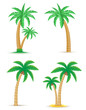 palm tropical tree set icons vector illustration