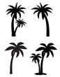 palm tropical tree set icons black silhouette vector illustratio - 63020775