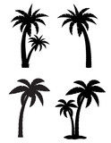 palm tropical tree set icons black silhouette vector illustratio