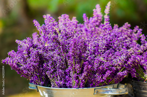 Bucket with lavender