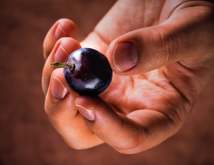 hand with grape