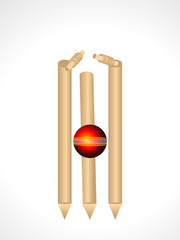 Cricket Stumps & Ball