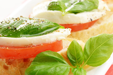 Caprese sandwiches with mozzarella