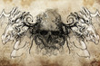 skull and dragons, Tattoo sketch, handmade design over vintage p