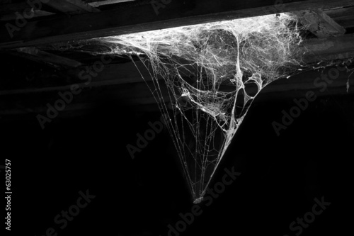 cobweb and dust