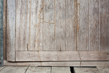 Old Wood Door with Termite