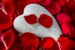 Rote Rosen mit Herz. Liebe zum Valentinstag