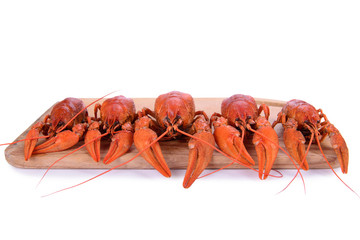 Boiled red crawfishes